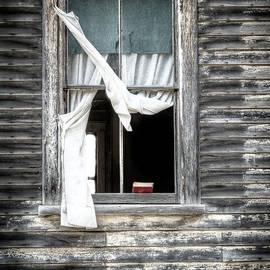 Bruce Denis - Abandoned