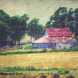 Anna Louise - Abandoned Red Tin Roof Barn