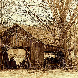 William Sturgell - Abandoned shed in Sepia