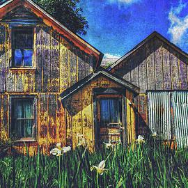Anna Louise - Abandoned Yellow Farm House