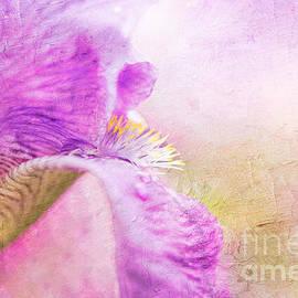 Nikki Vig - Absolute Purple Elegance - Lily Floral Print