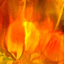 Stephanie Moore - Abstract 5827