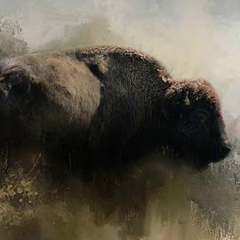 Jai Johnson - Abstract American Bison