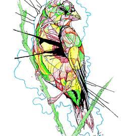Dwayne  Hamilton - Abstract Bird 01