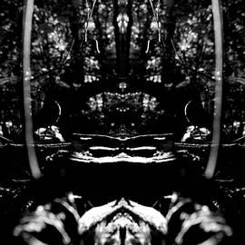 Catherine Munoz - Abstract