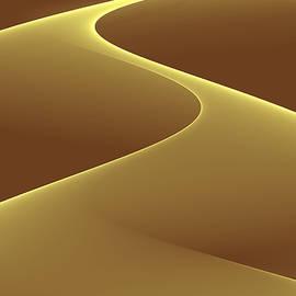 Anand Swaroop Manchiraju - Abstract Curve
