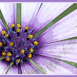 Wendy Wilton - Abstract Flower