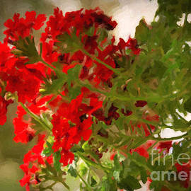 Janice Rae Pariza - Abstract Geraniums in Red