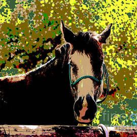 Dale Jackson - Abstract Image of Horse Named Moon