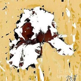 Marsha Heiken - Abstract Iris