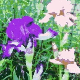 Marsha Heiken - Abstract Irises ll