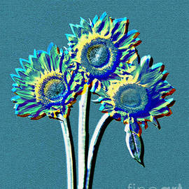 Jan Tyler - Abstract Sunflowers