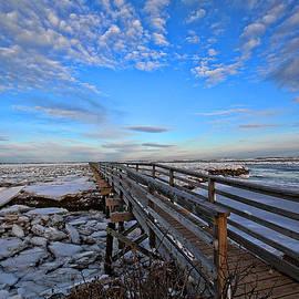 Thomas J Martin - Across the Ice and Toward the Horizon