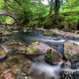 Adrian Evans - Afon Lledr Bridge