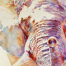 Stephie Butler - African Elephant _ The Governor