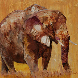 Sherry Shipley - African Gold