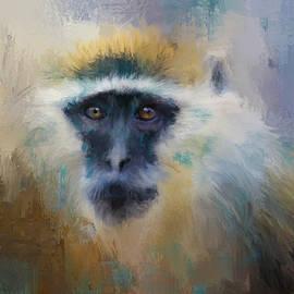 Jai Johnson - African Grivet Monkey