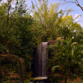 Pat Turner - African Water Fall
