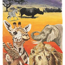 Sara Cuthbert - African wildlife