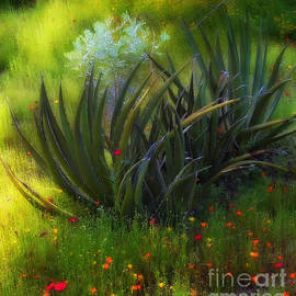 Mike Nellums - Agave and Wildflowers