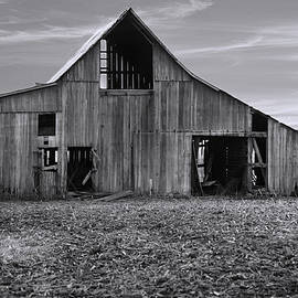 Theresa Campbell - Aged and Forgotten Barn