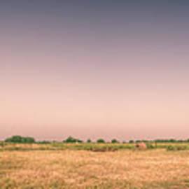 Joan Carroll - Aggie Barn Panorama