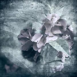 Bellesouth Studio - Alabaster Petals