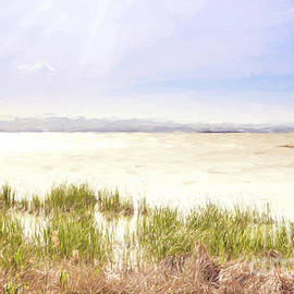 Julie Woodhouse - Albufera Lagoon