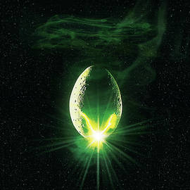 Alien 1979 - Unknow