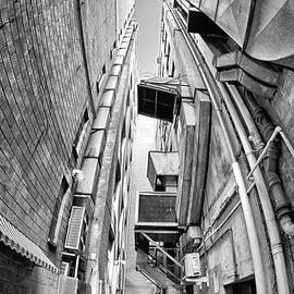 Bryan Freeman - Alley Stacks