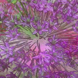 Lyn  Perry - Allium Giganteum