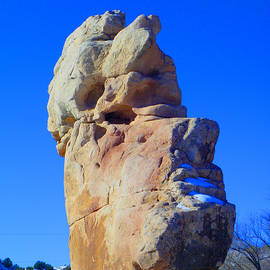 Tamara Kulish - Almost Like Easter Island Rock