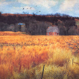Anna Louise - Almost Winter Kansas Countryside Silos and Barn