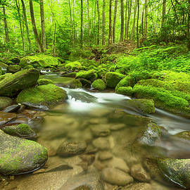 Stephen Stookey - Along the Banks of the Roaring Fork
