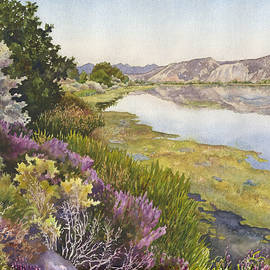 Anne Gifford - Along the Oregon Trail