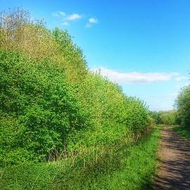 Along the Pennine Trail