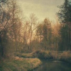 Piotr Tyminski - Along the river #6
