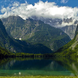 Alpine Meadow - Frank Tschakert