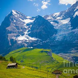 Anna Serebryanik - Alpine Scenery