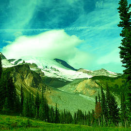 Jeff Swan - Alpine viewpoint