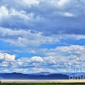 Michele Penner - Sky Over Alvord Playa