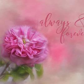 Kim Hojnacki - Always and Forever