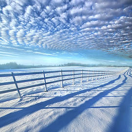 Always Whiter On The Other Side Of The Fence - Phil Koch