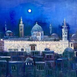 Laila Awad Jamaleldin - Amawee Mosquet  at night