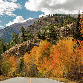 John Bartelt - Amazing Autumn Scenery