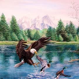 Daniel Butler - American Bald Eagle- Master of the Wind