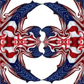 Rose Santuci-Sofranko - American Flag Polar Coordinate Abstract 1