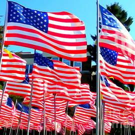 Ed Weidman - American Flags #1