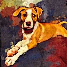Scott Wallace - American Foxhound Portrait