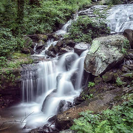 Chris Brunson - Amicalola Falls